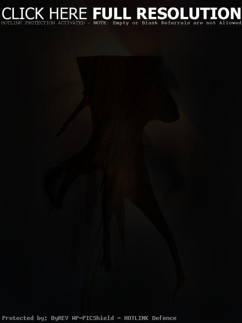 Cedar Root Wall Sconce